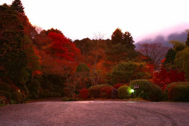仙郷楼の庭園_秋011