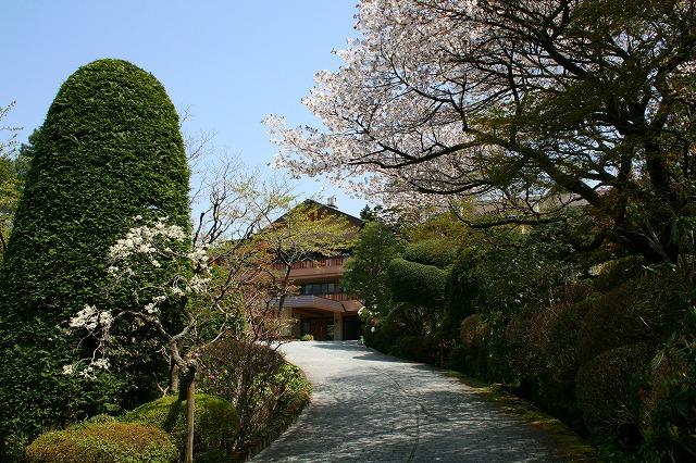 仙郷楼の庭園_春007