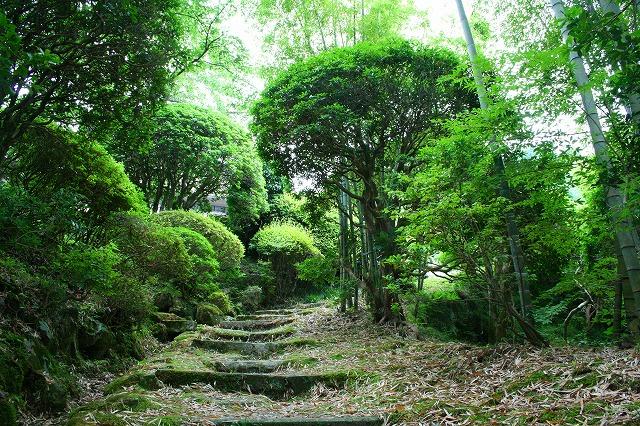 仙郷楼の庭園_夏003